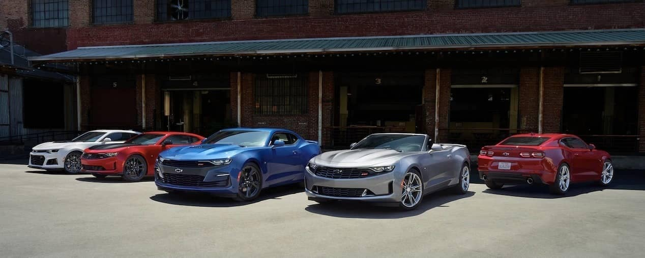 lineup of different trim 2019 Chevrolet Camaro