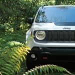 2019 Jeep Renegade Trailhawk White in forest