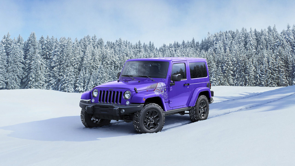 A purple 2016 Jeep Wrangler Backcountry is parked in a snowy field in front of snow-covered trees.