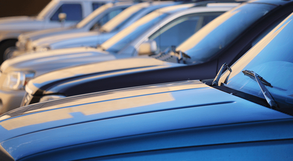 A row of vehicles at a used car dealership in Colorado