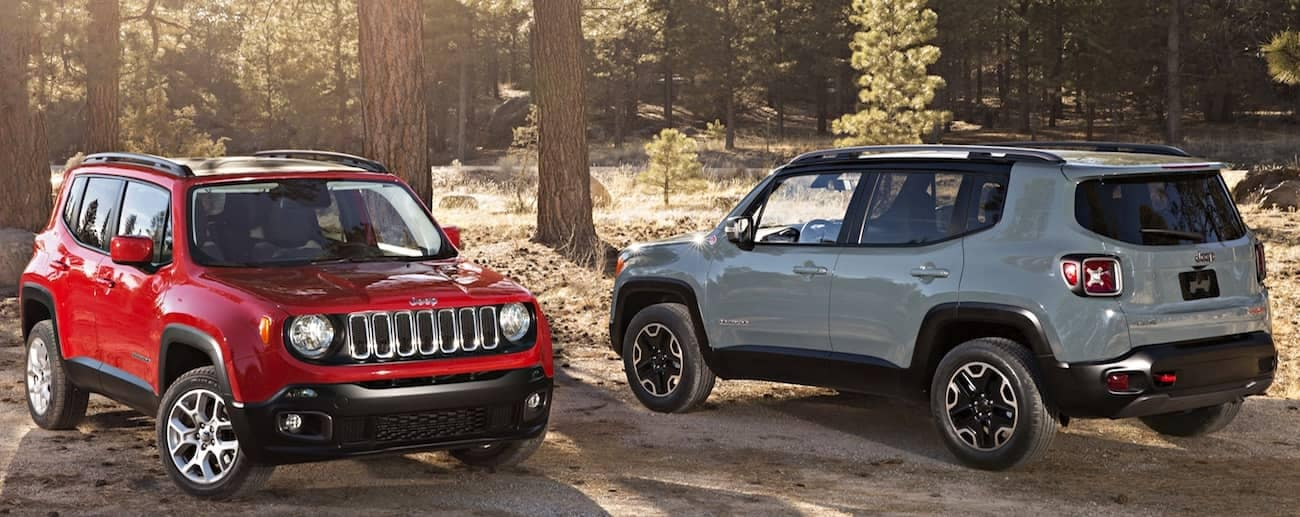 Colorado Springs - A red and a gray 2019 Jeep Renegades parked in the woods next to tall pine trees