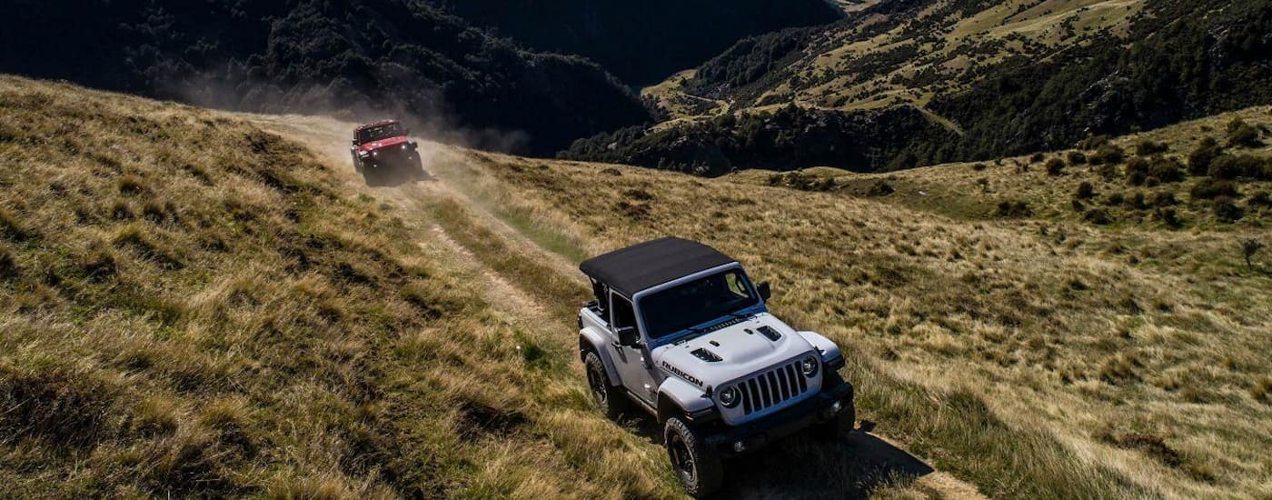 A white 2018 Jeep Wrangler and a red Wrangler are driving on a dusty trail with mountain views. You can find Jeeps and other used cars in Colorado Springs at Faricy.