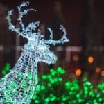 A green lit up raindeer with Christmas lights behind it.