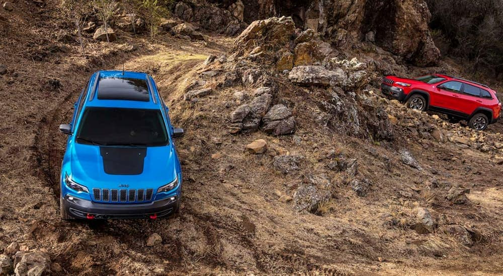 A red 2020 Jeep Cherokee is following a blue one up a winding trail.