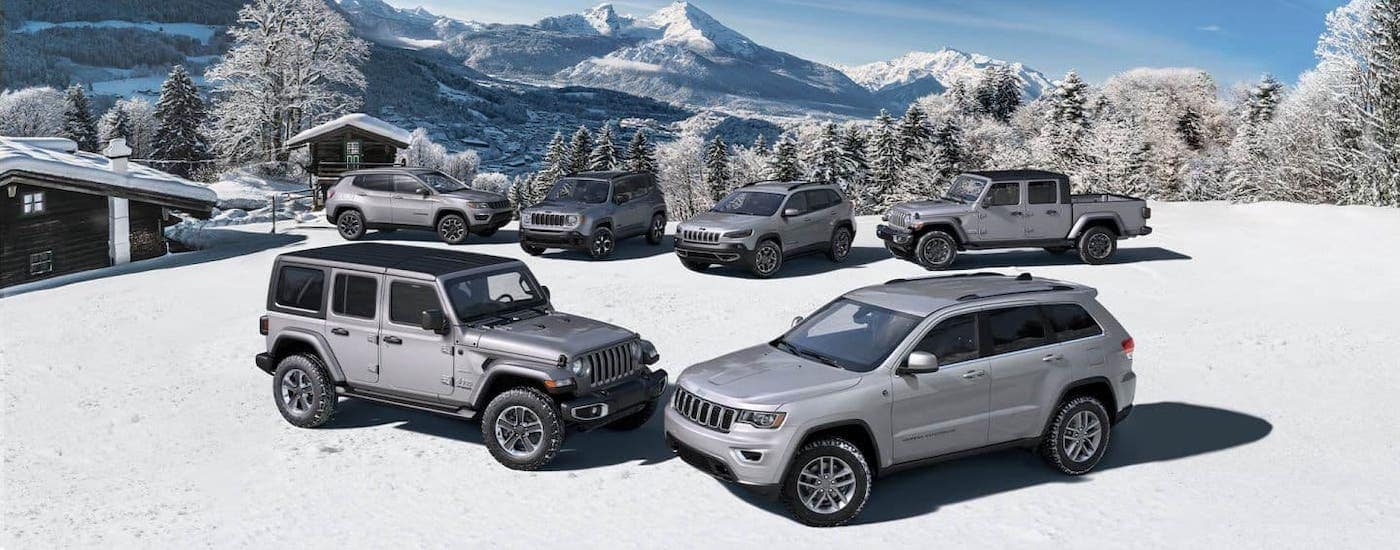 The used Jeep lineup of silver North Editions vehicles are parked atop a snowy mountain.