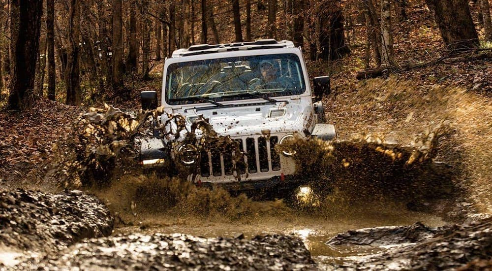 A white 2021 Jeep Wrangler is shown from the front driving through a mud puddle in the woods near Colorado Springs.