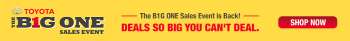 Big One Sales slider