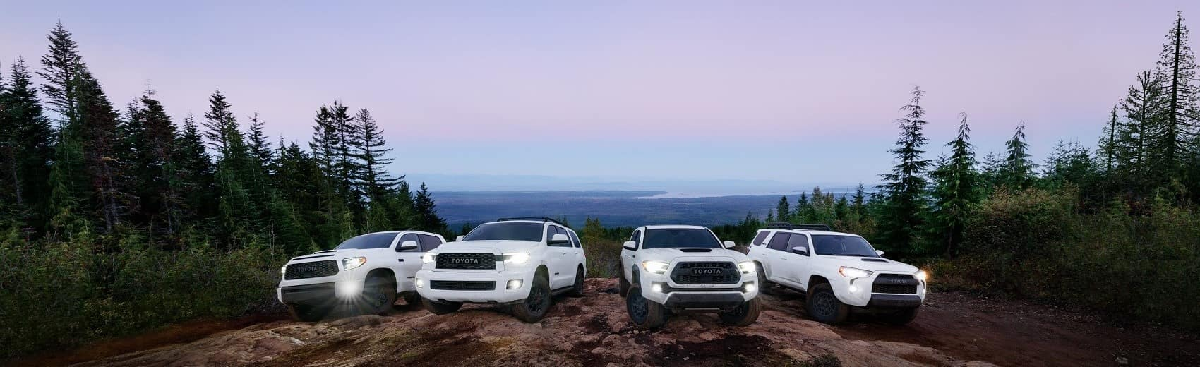 2021 Toyota lineup on a mountain banner