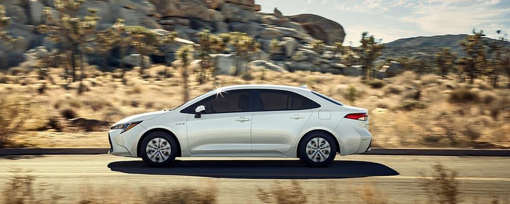 2020 corolla white driving in desert